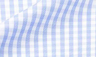 Checked blue Poplin